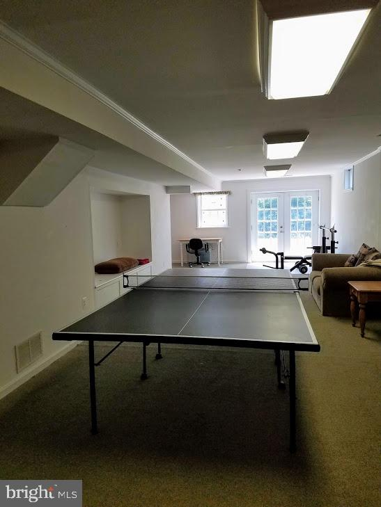 Game Room Space - 19187 SWAN CT, PURCELLVILLE