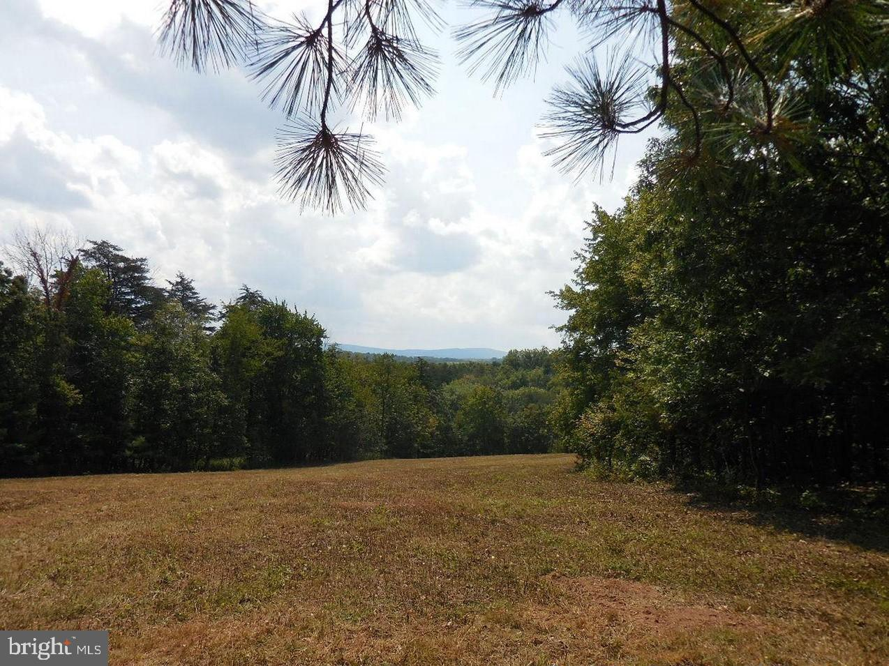 Land for Sale at Rt 50 Gore, Virginia 22637 United States