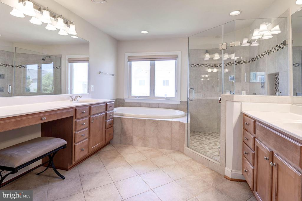 Master Bath with Separate shower/soaking tub - 43586 PURPLE ASTER TER, LEESBURG