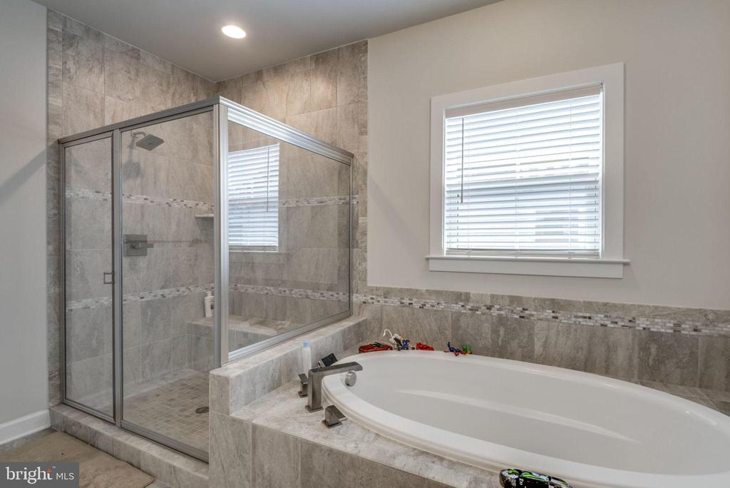 SEPARATE STANDING SHOWER AND TUB - 22291 PHILANTHROPIC DR, ASHBURN