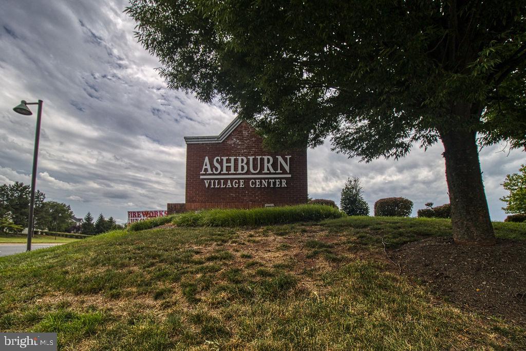 Welcome To Ashburn - 21024 TIMBER RIDGE TER #303, ASHBURN