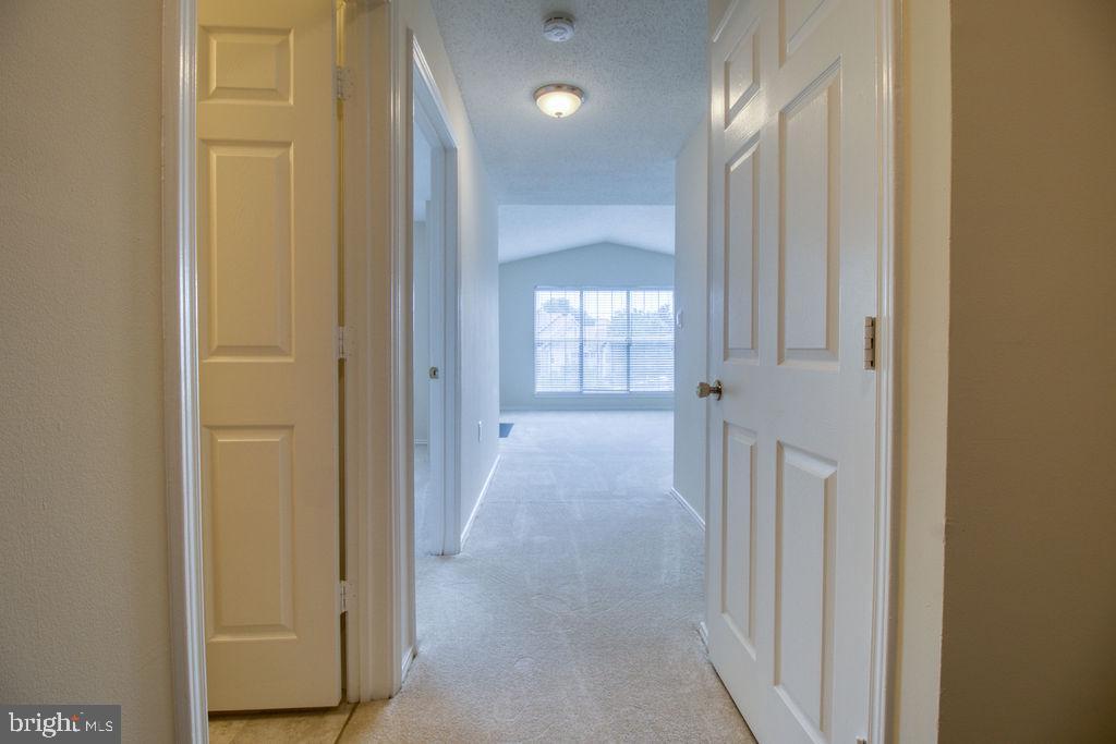 Entry Hallway Looks Into Bright Sunny Condo - 21024 TIMBER RIDGE TER #303, ASHBURN