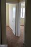 Decent size bedrooms - 19911 SPUR HILL DR, GAITHERSBURG