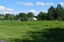 Forever green space - 19911 SPUR HILL DR, GAITHERSBURG
