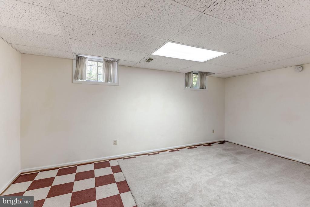 Bonus Room - Lower Level - 2424 S WALTER REED DR #3, ARLINGTON