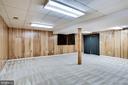 LOWER LEVEL BONUS ROOM - 8010 TREASURE TREE CT, SPRINGFIELD