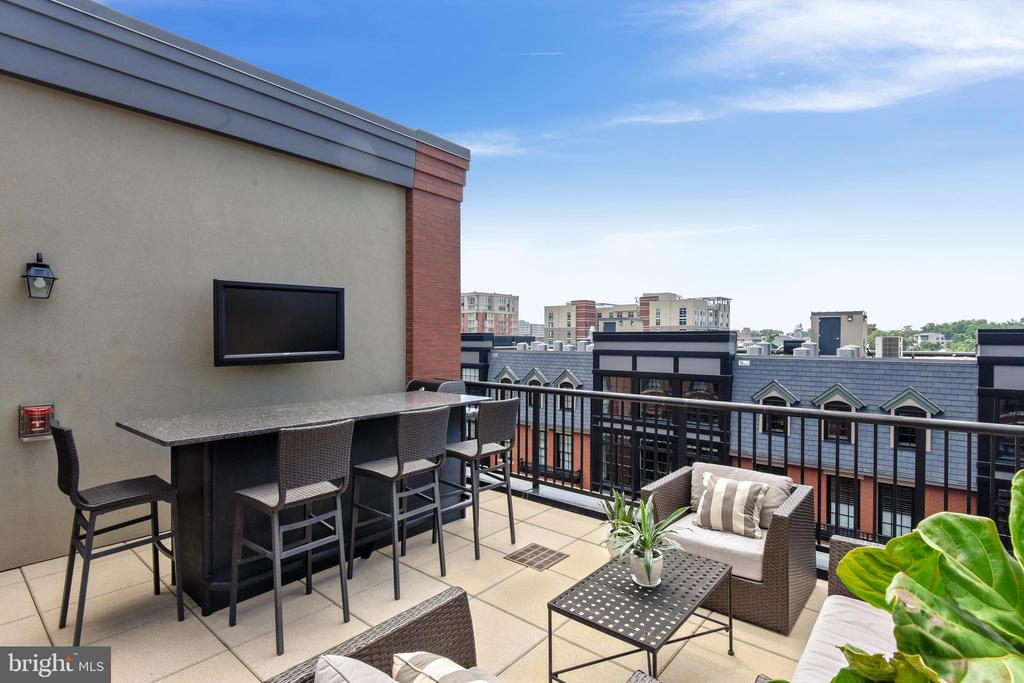 Built-in  Bar &  TV on Rooftop Terrace - 1700 CLARENDON BLVD #128, ARLINGTON