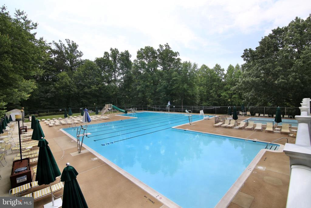 Community Pool - 8010 TREASURE TREE CT, SPRINGFIELD