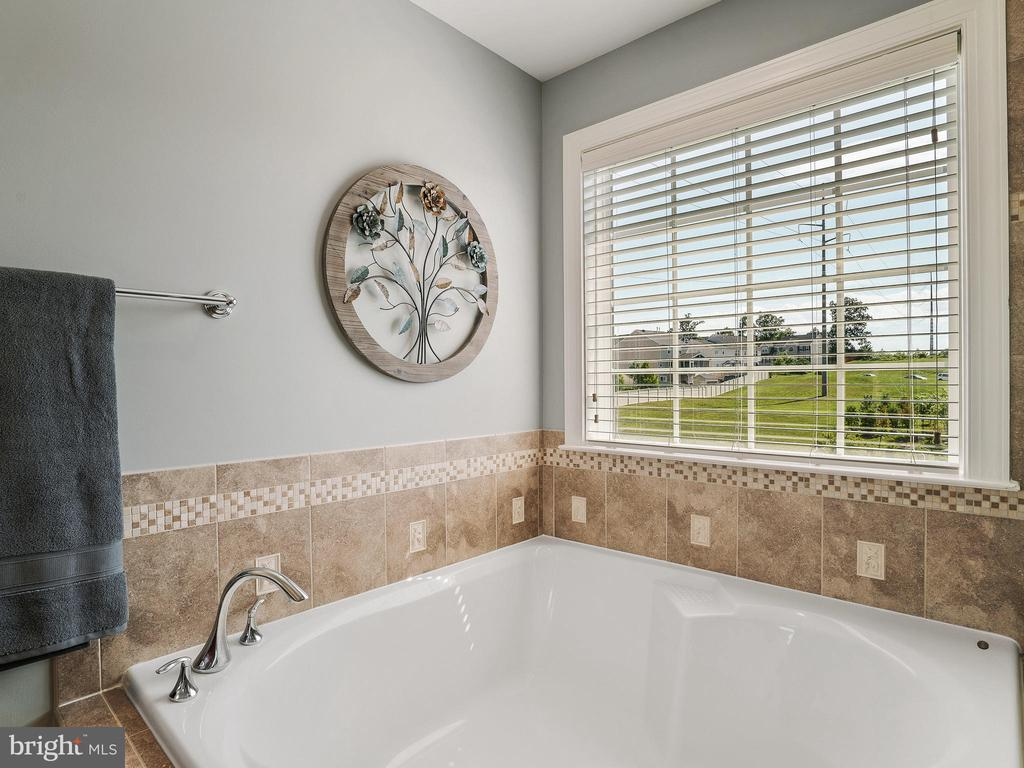 Soaking Tub in Master Bath - 14430 HAMILL RUN DR, GAINESVILLE