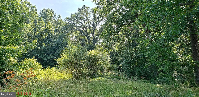أراضي للـ Sale في Warsaw, Virginia 22572 United States