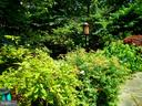 Landscaping. - 659 ROCK COVE LN, SEVERNA PARK