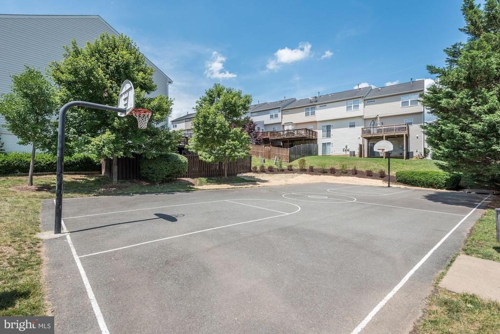Sycamore Hill Basketball Court - 248 GOLDEN LARCH TER NE, LEESBURG