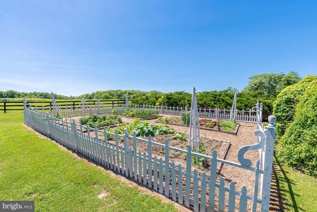 Plentiful Vegetable Garden - 20597 FURR RD, ROUND HILL