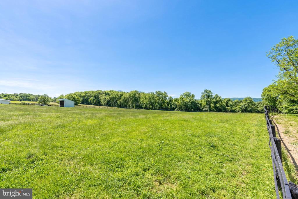Lush Pastures all with Automatic Waterers - 20597 FURR RD, ROUND HILL