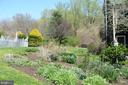 Early Spring  Blooms - 20597 FURR RD, ROUND HILL