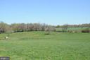 Two large Pastures to the East with Pond - 20597 FURR RD, ROUND HILL