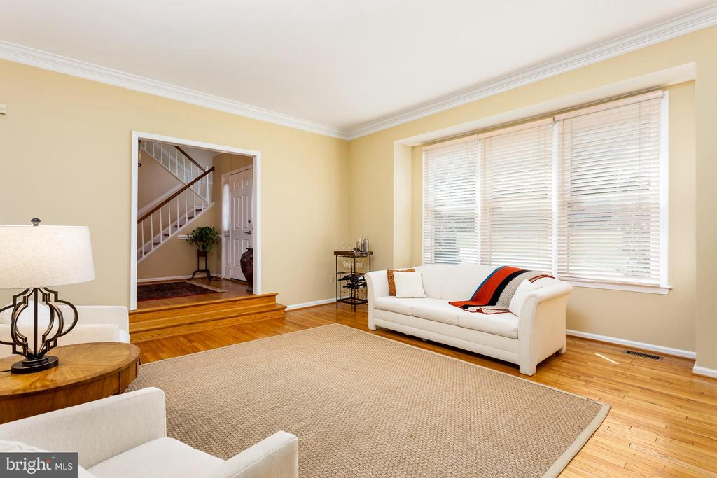 Intimate and Spacious Living Room - 10735 BEECHNUT CT, FAIRFAX STATION