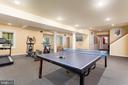 Huge Walkout Recreation Room - 10735 BEECHNUT CT, FAIRFAX STATION