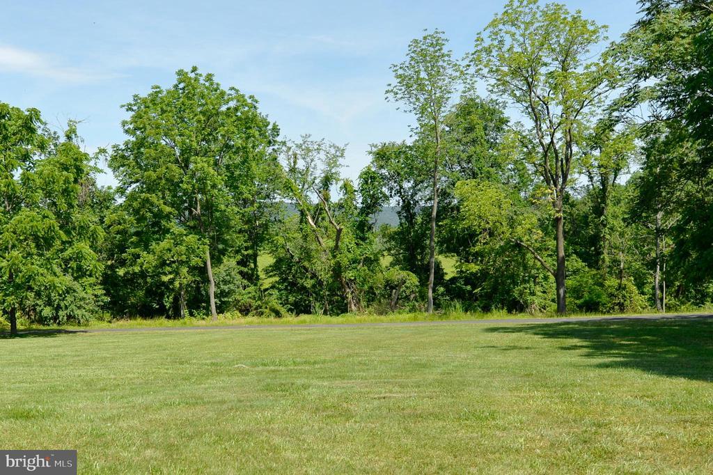 Backyard - 3 CLARA MAE COURT, ROUND HILL