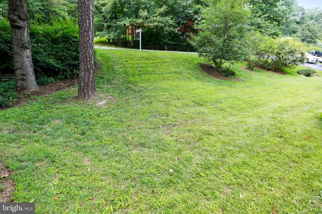 Spacious nature lover's lot of over 1/3 an acre - 10733 CROSS SCHOOL RD, RESTON