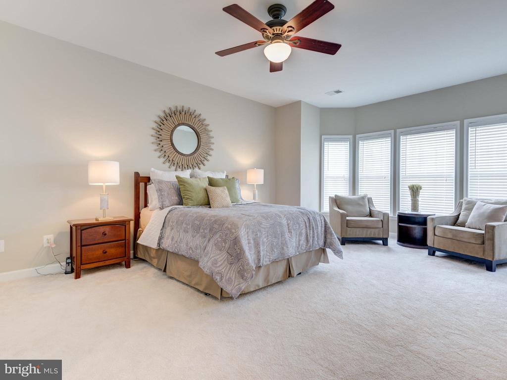 FABULOUS & SPACIOUS  OWNERS SUITE - 19145 COMMONWEALTH TER, LEESBURG