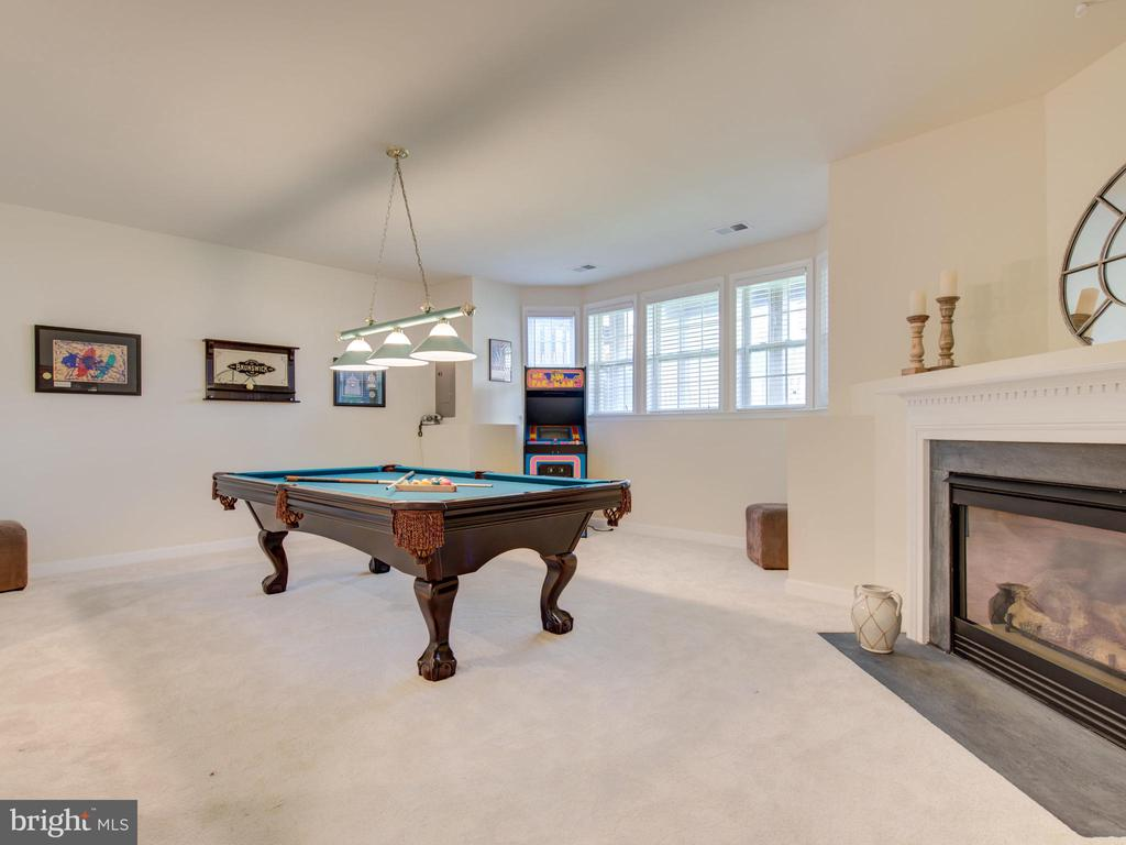 LIGHT FILLED LOVER LEVEL WITH  FIREPLACE - 19145 COMMONWEALTH TER, LEESBURG