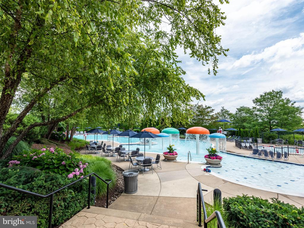 AMAZING POOLS AND AMENITIES - 19145 COMMONWEALTH TER, LEESBURG