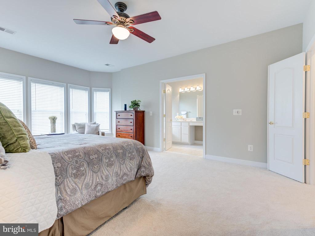 OWNERS SUITE AND DUAL DOOR ENTRY TO  MASTER BATH - 19145 COMMONWEALTH TER, LEESBURG