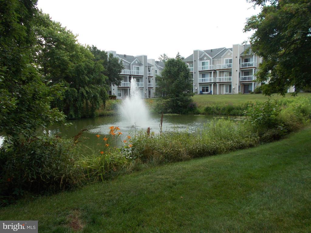 Fountain and pond! - 20602 CORNSTALK TER #102, ASHBURN