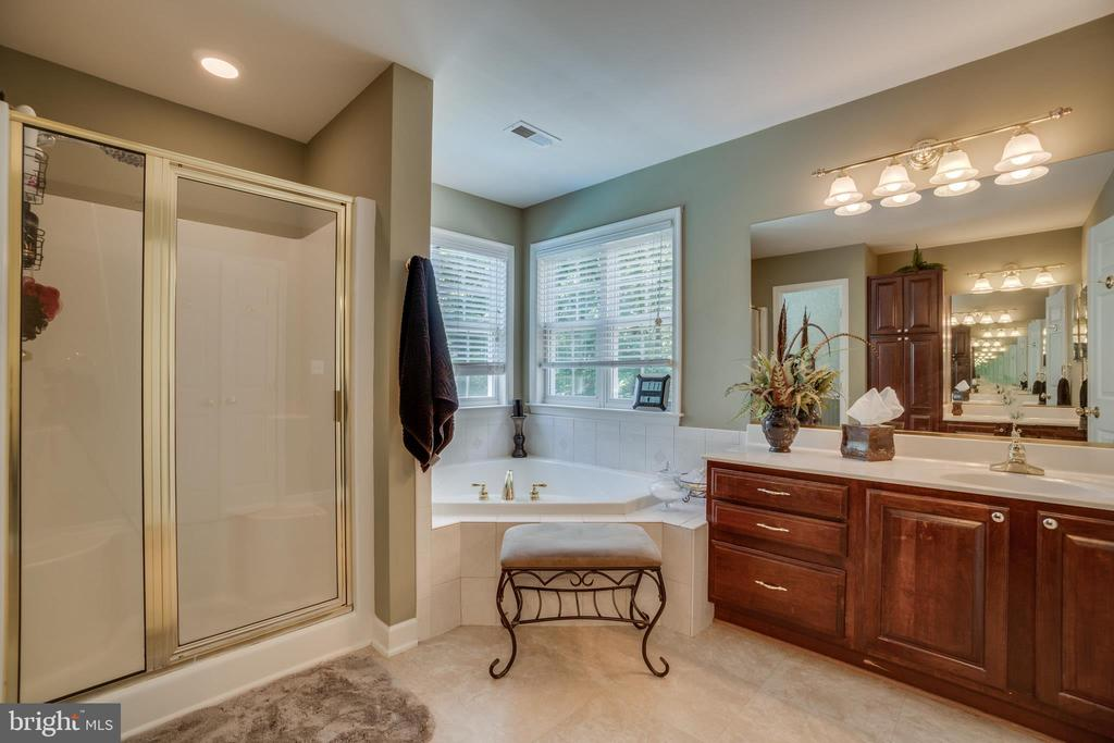 Sunken Tub and Separate Shower in Master Bath - 175 SAINT MARYS LN, STAFFORD
