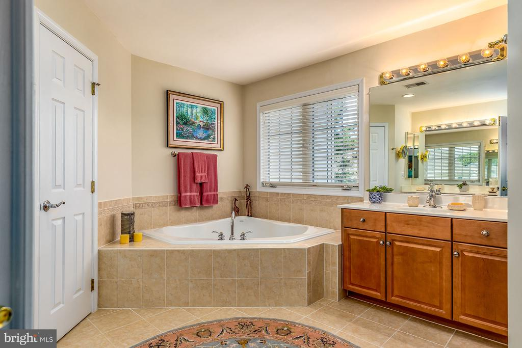 OVERSIZED TUB & DUAL SINKS - 25753 SPECTACULAR RUN PL, CHANTILLY