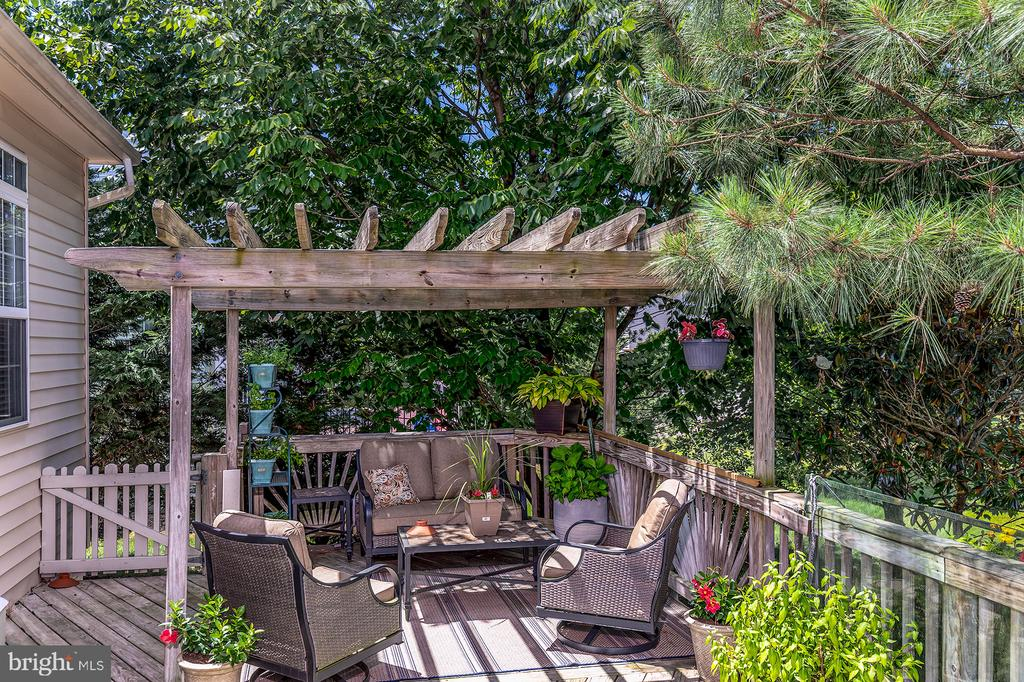 YOUR PRIVATE OASIS - 25753 SPECTACULAR RUN PL, CHANTILLY