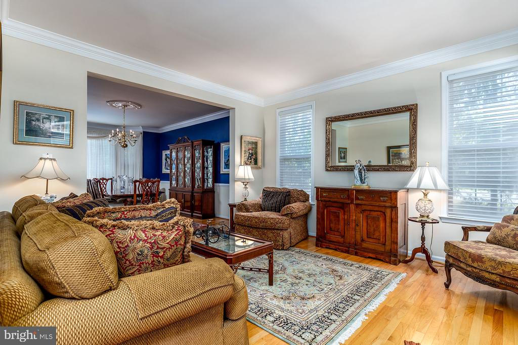 LARGE LIVING ROOM - 25753 SPECTACULAR RUN PL, CHANTILLY