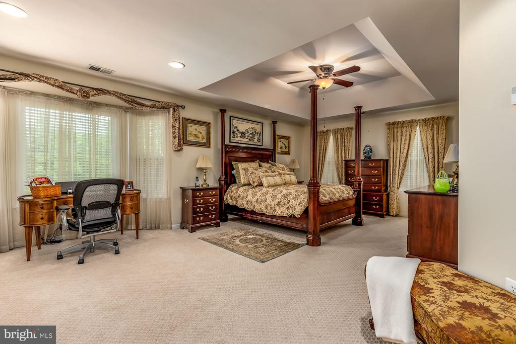 MASTER BR W/BAY WINDOW AND TRAY CEILING - 25753 SPECTACULAR RUN PL, CHANTILLY