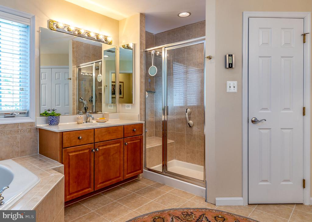 LUX MASTER BATH - 25753 SPECTACULAR RUN PL, CHANTILLY