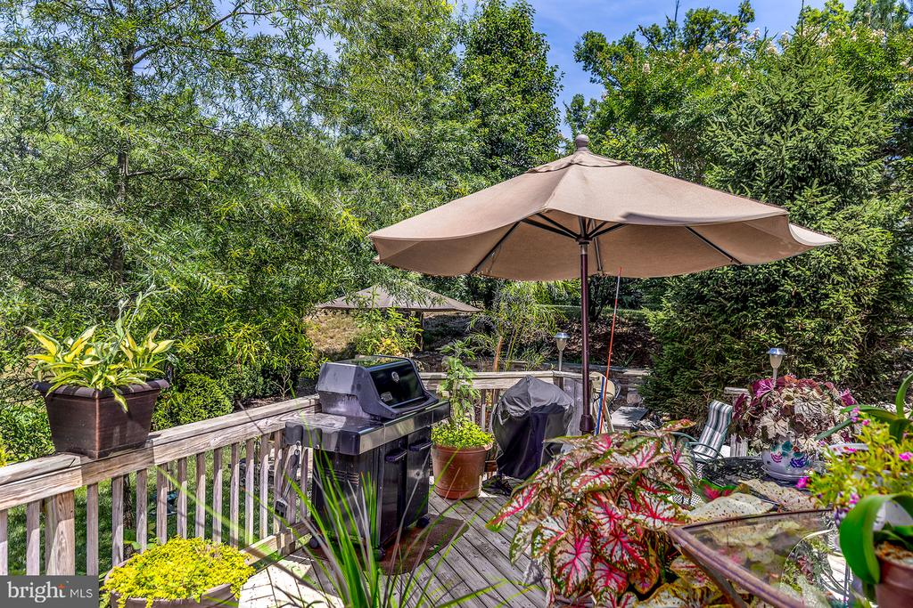 BI=LEVEL DECK - 25753 SPECTACULAR RUN PL, CHANTILLY