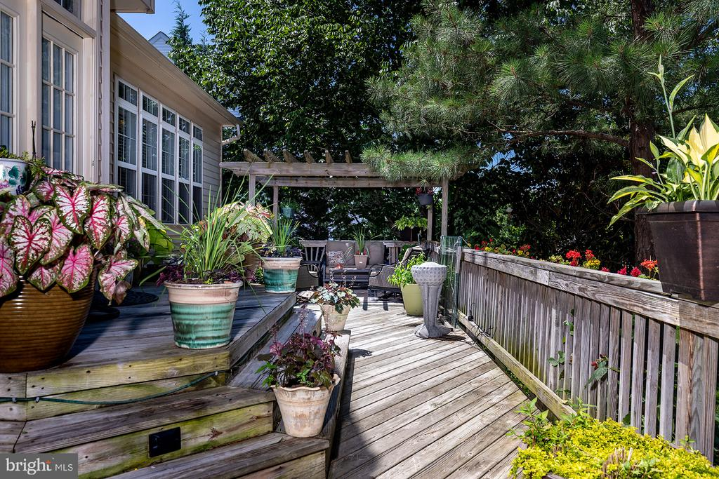 FULL-HOUSE DECK EXPANSE - 25753 SPECTACULAR RUN PL, CHANTILLY