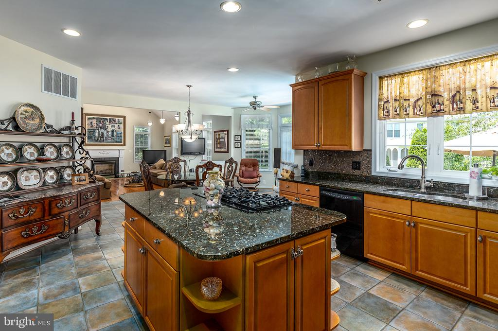 FABULOUS CHEF'S DREAM OF A KITCHEN - 25753 SPECTACULAR RUN PL, CHANTILLY