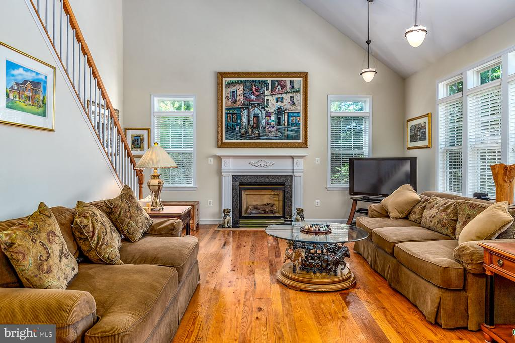 VAULTED CEILING & FIREPLACE IN FAMILY ROOM - 25753 SPECTACULAR RUN PL, CHANTILLY