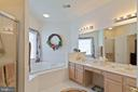 Master Bathroom - 42819 MEANDER CROSSING CT, BROADLANDS