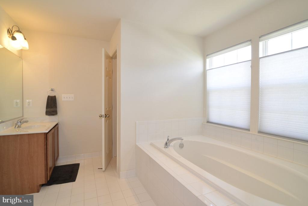 Master Bedroom Soaking Tub - 17618 CLEVELAND PARK DR, ROUND HILL