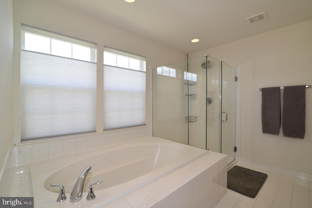 Master Bathroom with Soaking Tub  & Shower - 17618 CLEVELAND PARK DR, ROUND HILL