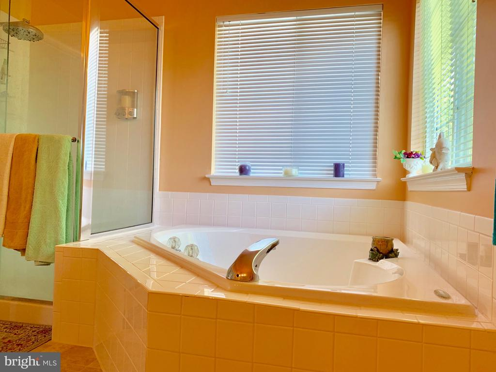 Master Bath - Soaking tub separate shower - 9202 MATTHEW DR, MANASSAS PARK