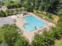 Community pool - 7375 TUCAN CT, WARRENTON