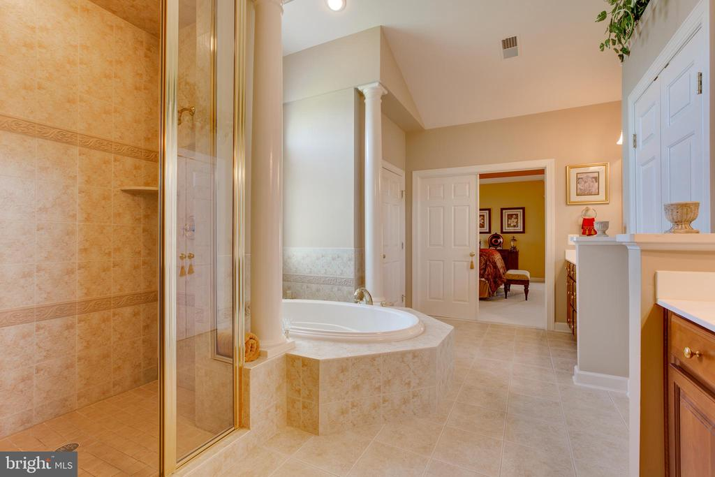 Luxury Master Bathroom with Separate Shower - 22388 BELLE TERRA DR, ASHBURN