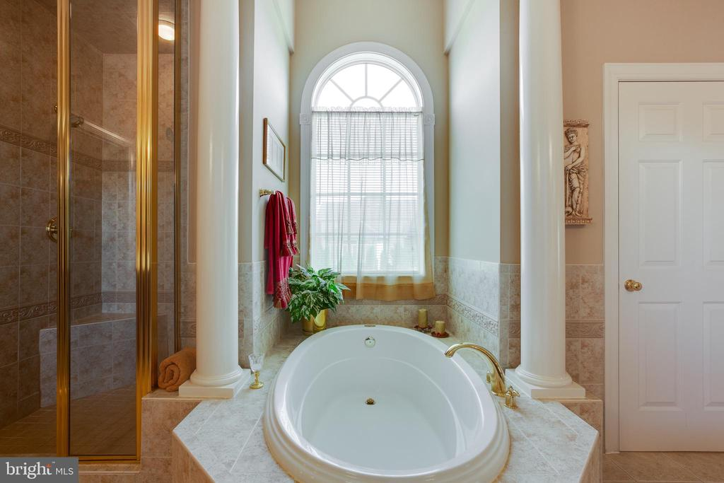Luxury Master Bathroom with Soaking Tub - 22388 BELLE TERRA DR, ASHBURN