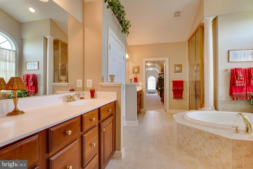 Luxury Master Bathroom - 22388 BELLE TERRA DR, ASHBURN