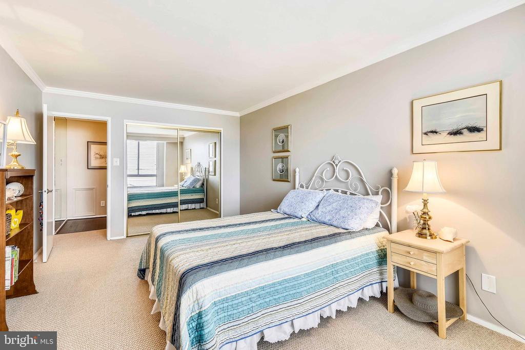 Second bedroom with mirrored closet doors - 1800 OLD MEADOW RD #621, MCLEAN