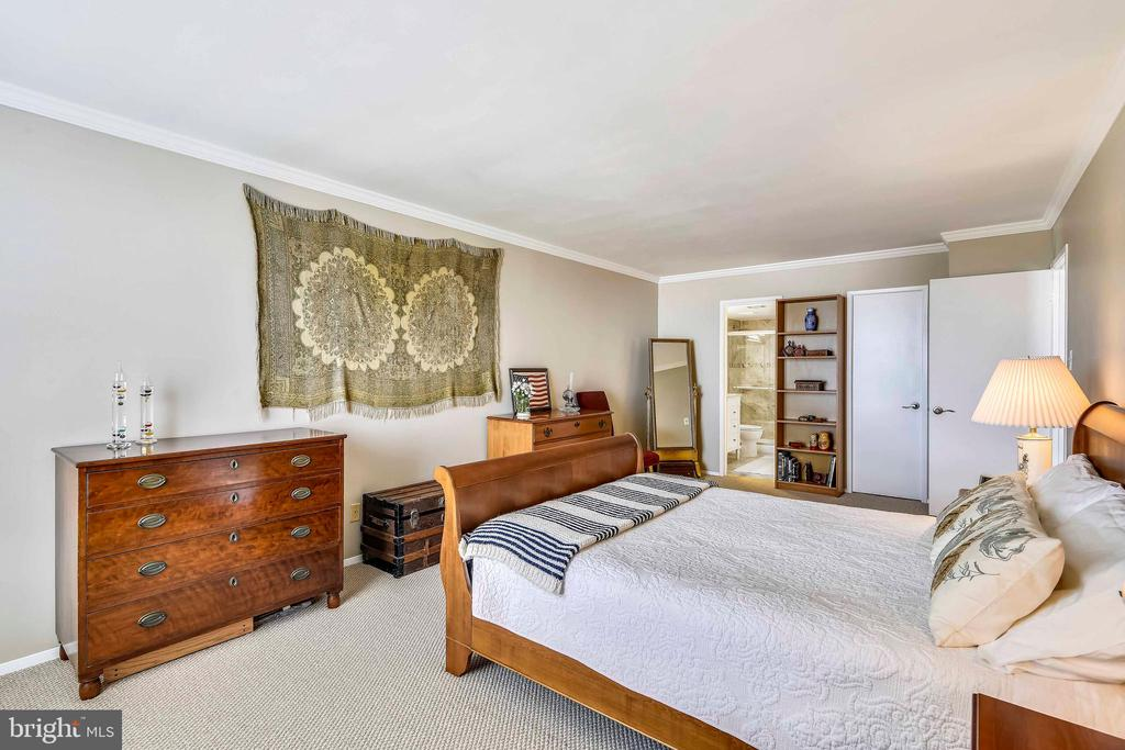 Master bedroom with bath and walk-in closet beyond - 1800 OLD MEADOW RD #621, MCLEAN