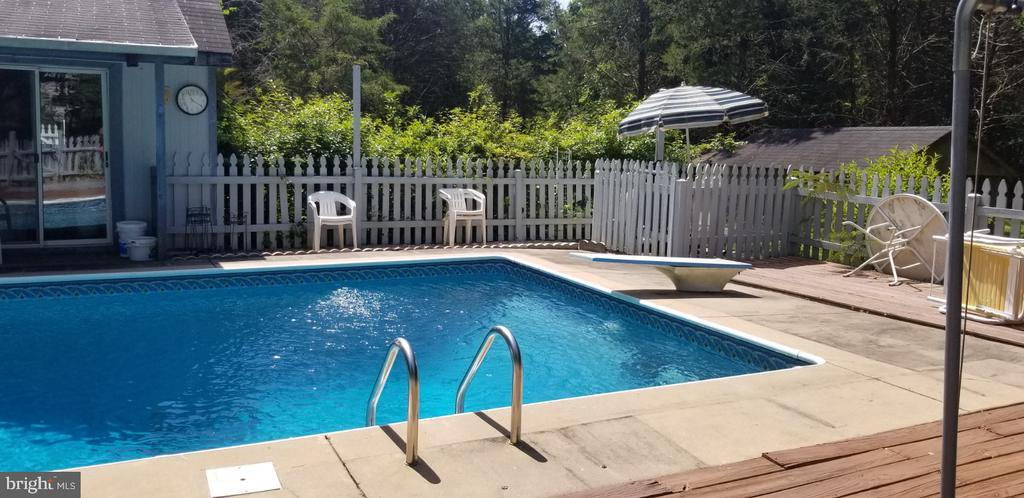 Diving board at 9.5' at the deep end! - 31837 ZOAR RD, LOCUST GROVE
